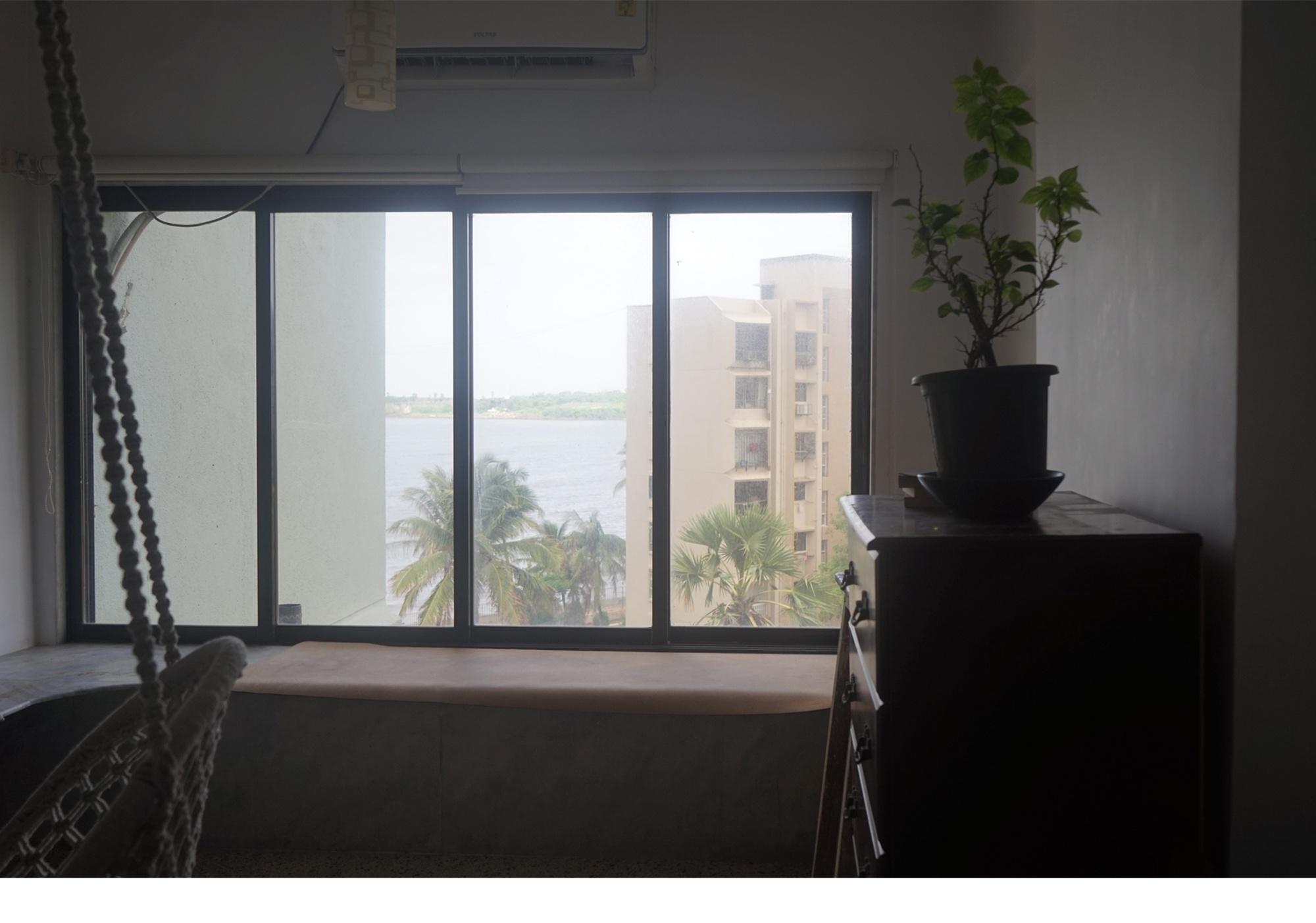 I_Brought_Home_A_New_Plant_Kush_1_Resized