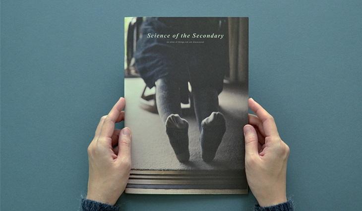 ScienceOfTheSecondary_Socks