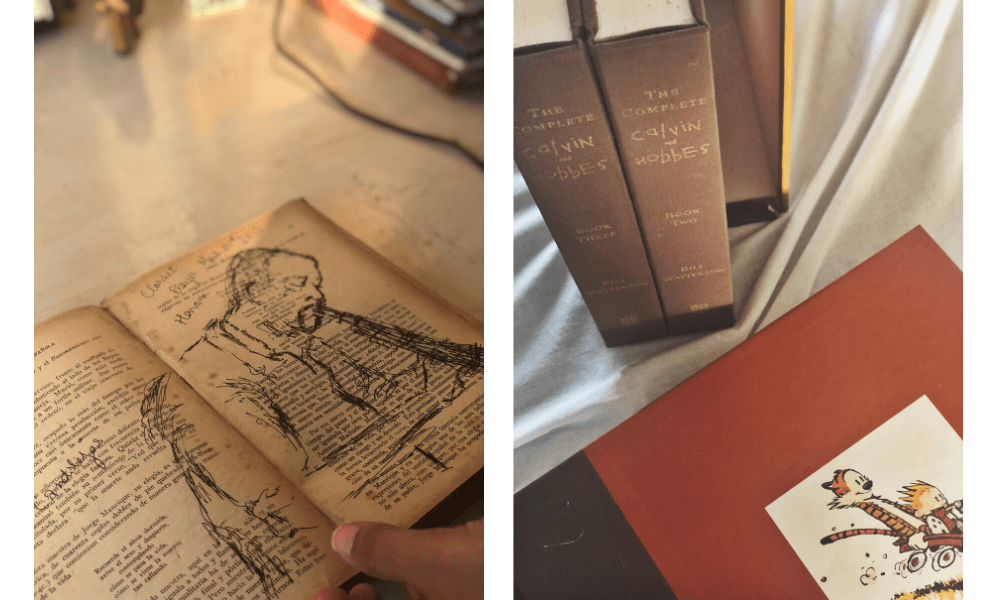 meera-ganapathi-bookshelf-6