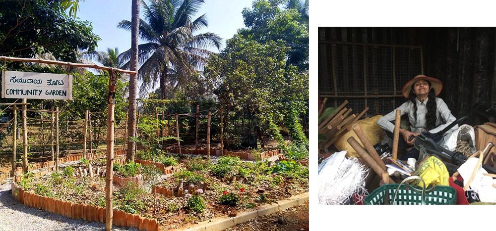 permaculture-design-ananas-community-garden